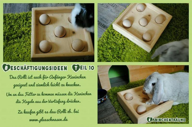 10 logispiele kaninchen