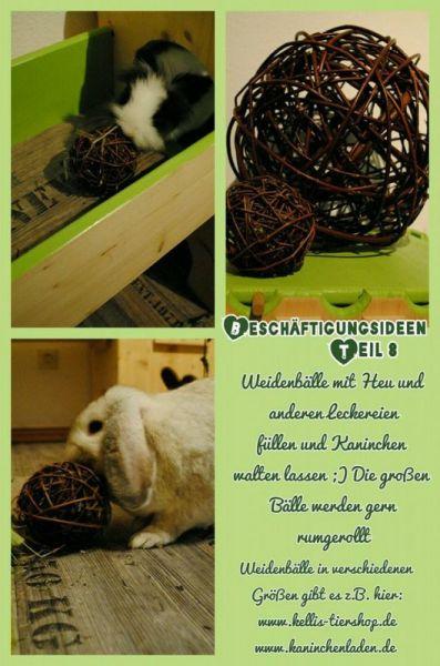 8 weidenbälle kaninchen