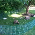 auslaufgehege kaninchen