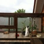 balkongehege3