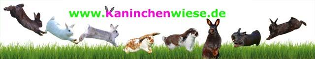 banner-kaninchenwiese