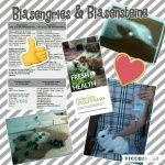 Blasengries und Blasensteine