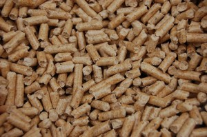 einstreu-pellets-kaninchen