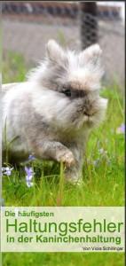 flyer-kaninchen-haltungsfehler