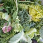 Gemüseliste