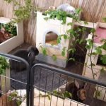 gehege innenhaltung kaninchen