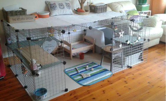 gitter w rfel gehege kaninchen kaninchen ratgeber. Black Bedroom Furniture Sets. Home Design Ideas