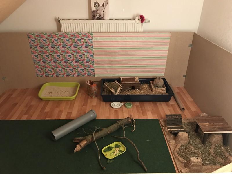 innengehege kaninchen kaninchenwiese. Black Bedroom Furniture Sets. Home Design Ideas