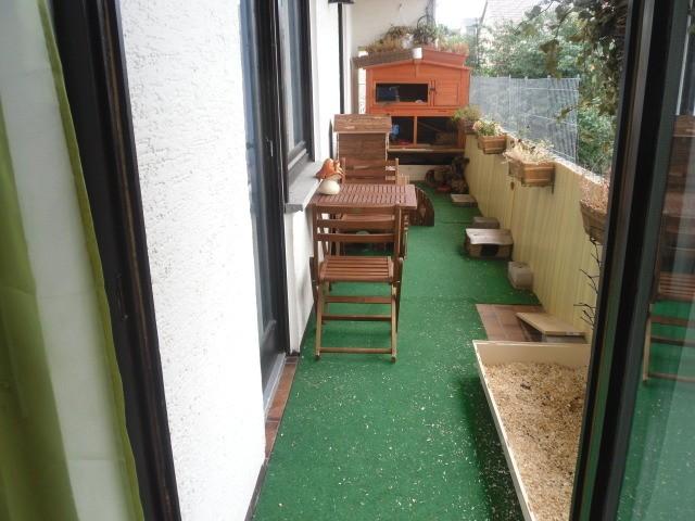 tomaten auf balkon halten die feinste sammlung von home. Black Bedroom Furniture Sets. Home Design Ideas