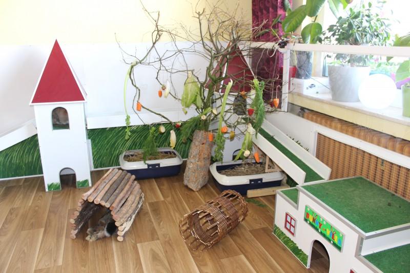 kaninchen einrichtung kreativ kaninchen ratgeber. Black Bedroom Furniture Sets. Home Design Ideas