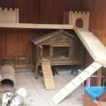 kaninchen etagen