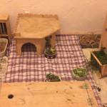 Lagerung gelähmter Kaninchen