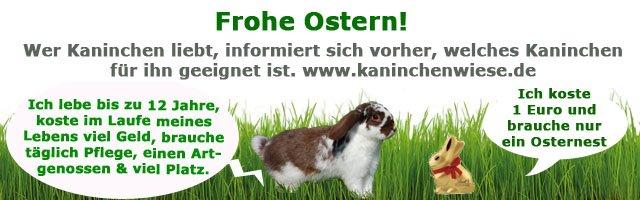 kaninchen-ostern
