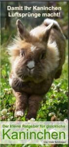 kaninchen-ratgeber-flyer