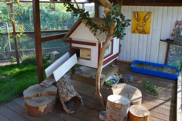 Kaninchen berwintern for Parc pour lapin exterieur
