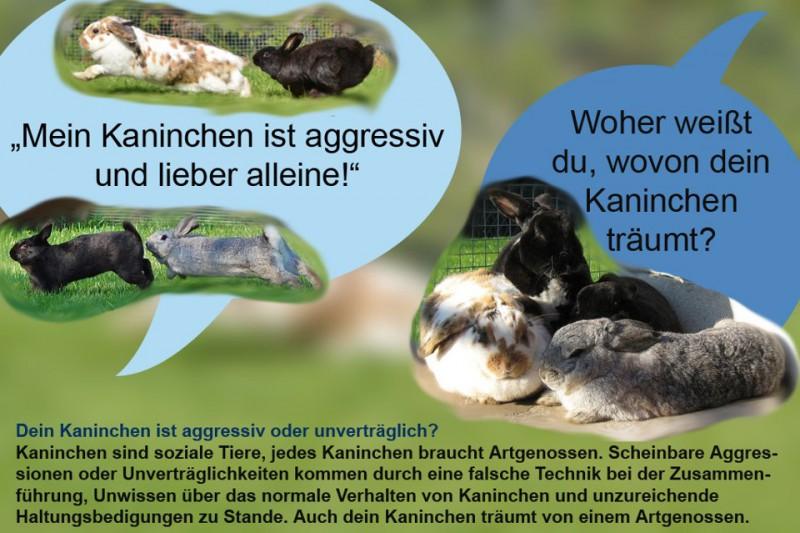 kaninchen-unverträglich