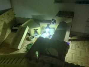 kaninchen uvb lampe