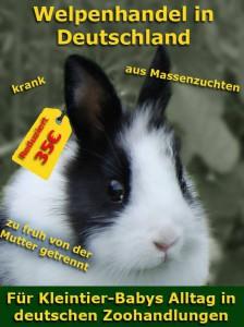 kaninchen welpen zoohandel