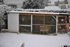 kaninchen winter außenhaltung