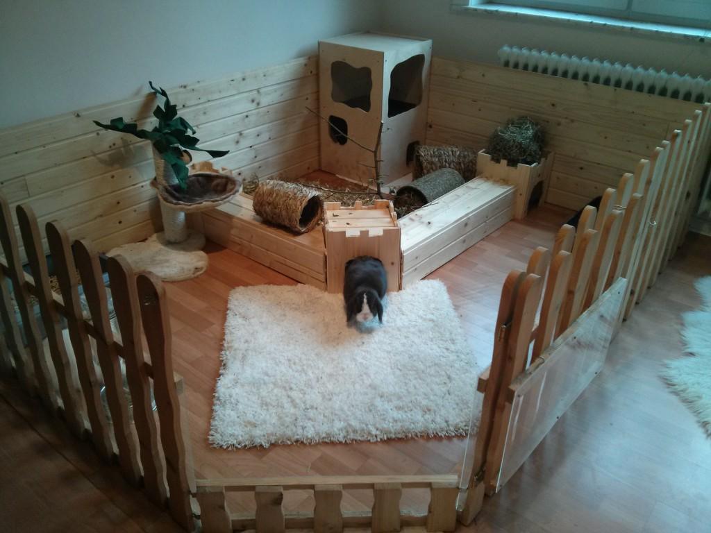 Kaninchenwiese der kaninchenratgeber for Kinderzimmer zaun