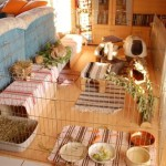 kaninchen wohnzimmer