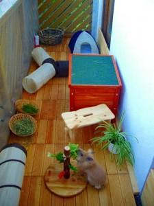 kaninchenbalkoneinricht