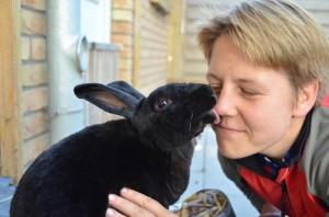 Kaninchenberatung-Kontakt-Formular