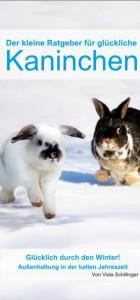 kaninchenflyer-winter