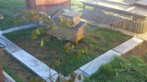 kaninchengehege-einfach (4)