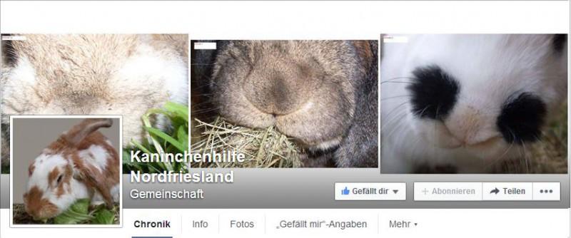 kaninchenhilfe nordfriesland