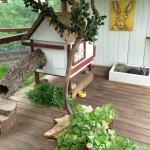 kaninchenpalast