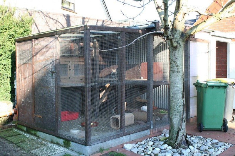 kaninchenvoliere kaninchen ratgeber. Black Bedroom Furniture Sets. Home Design Ideas