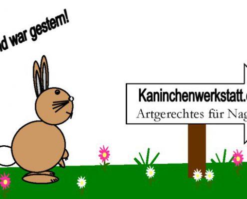 kaninchenwerkstatt