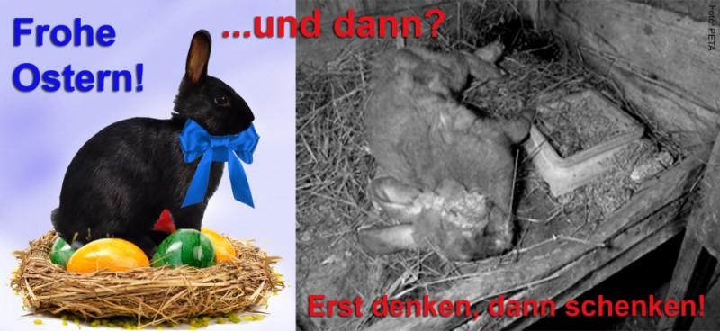 kinder-ostern-hasen
