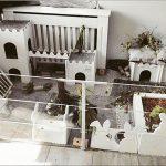 Wohnungshaltung