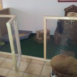 toilette kaninchengehege