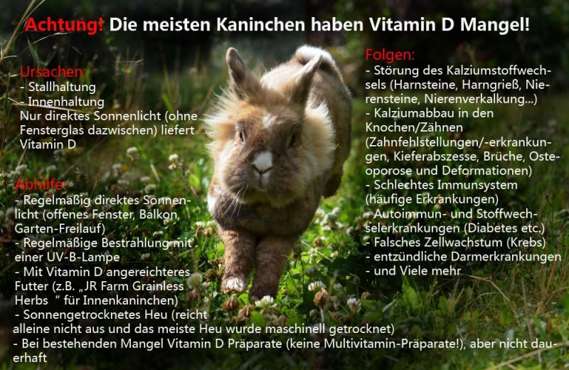 vitamin d Kopie