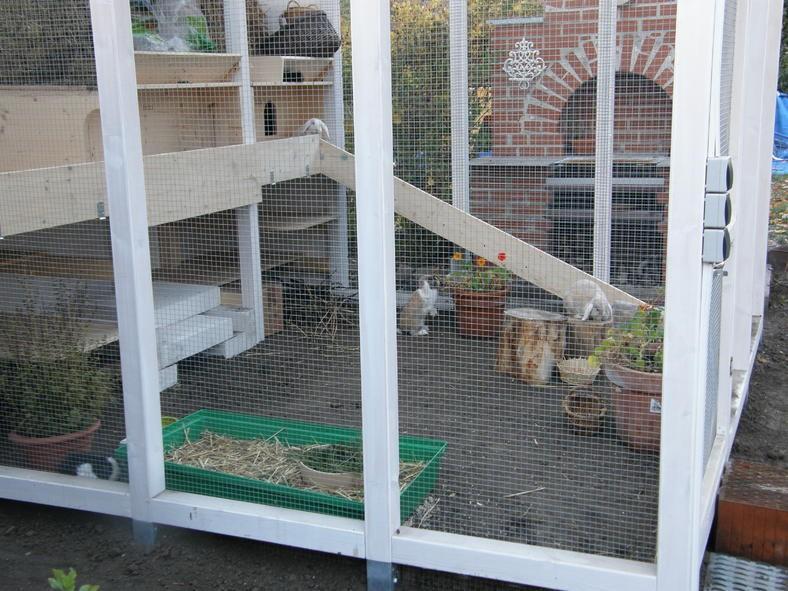 voliere mit kaninchen kaninchen ratgeber. Black Bedroom Furniture Sets. Home Design Ideas