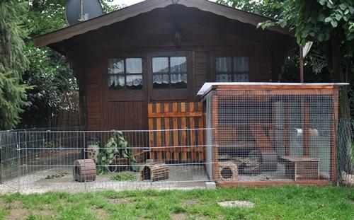 voliere vor gartenhaus kaninchen ratgeber. Black Bedroom Furniture Sets. Home Design Ideas