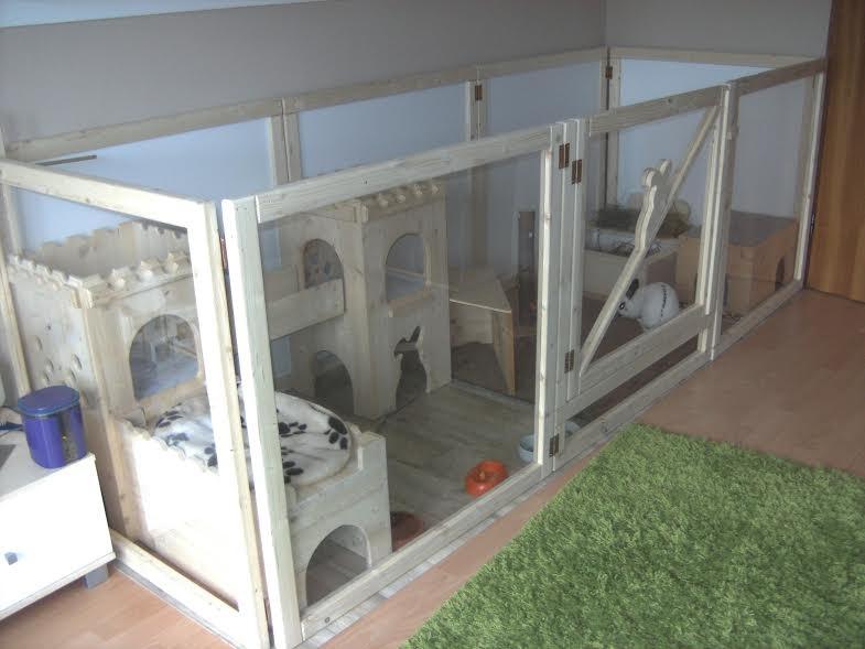 kaninchenhaltung in der mietwohnung haltung kaninchen unkategorisiert. Black Bedroom Furniture Sets. Home Design Ideas