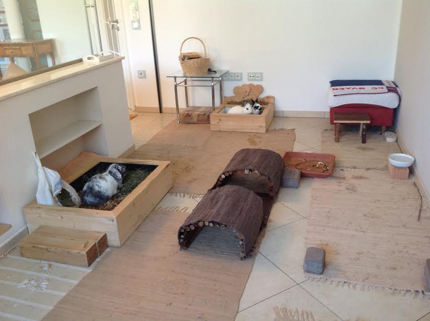 kaninchen. Black Bedroom Furniture Sets. Home Design Ideas