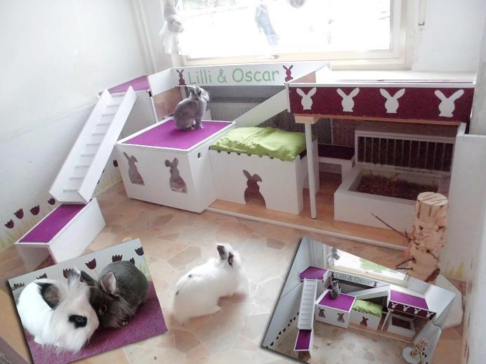 wohnungshaltung kaninchenwiese. Black Bedroom Furniture Sets. Home Design Ideas